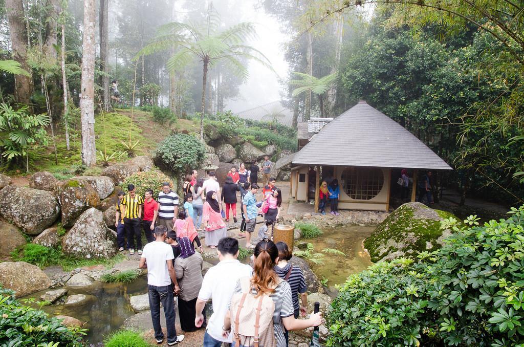 باغ گیاه شناسی ژاپنی برجایا (BERJAYA) در مالزی