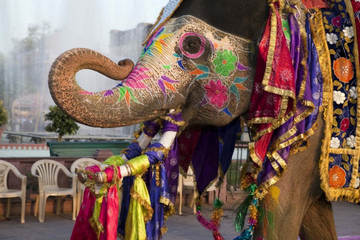 10 مورد از بهترین جاذبه های توریستی هند