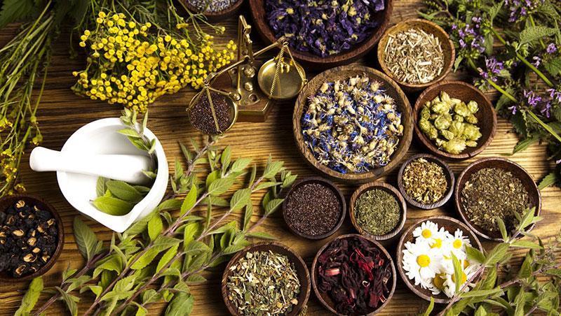 توسعه شناخت عمومی از صنعت گیاهان دارویی