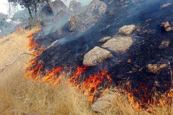 طرح پایش حفاظتی در عرصه های مستعد آتش سوزی اجرایی شد