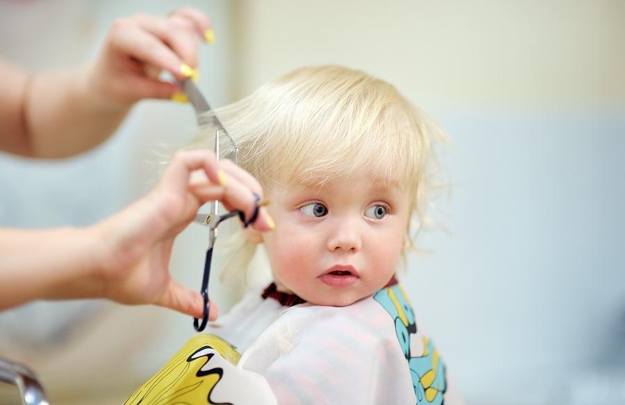 افزایش هزینه کوتاه کردن مو در آلمان، بقیه قیمت ها ثابت هستند